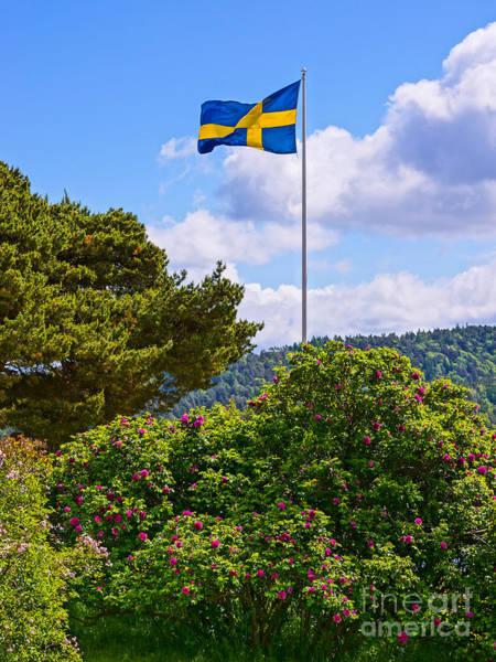 Photograph - Swedish National Day by Lutz Baar