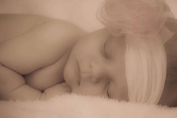 Photograph - Sweet Dreams by Trish Tritz