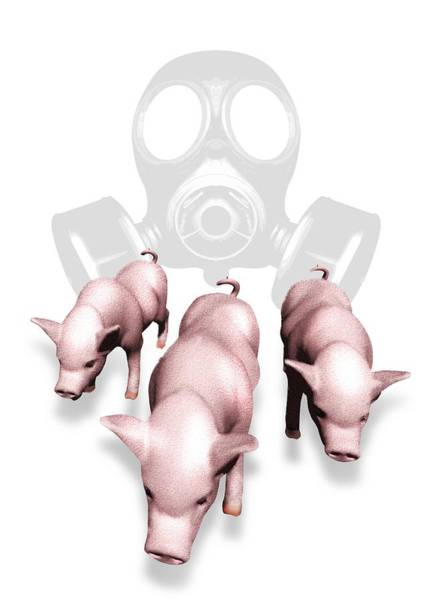 Gasmask Photograph - Swine Flu Protection, Conceptual Image by Victor Habbick Visions