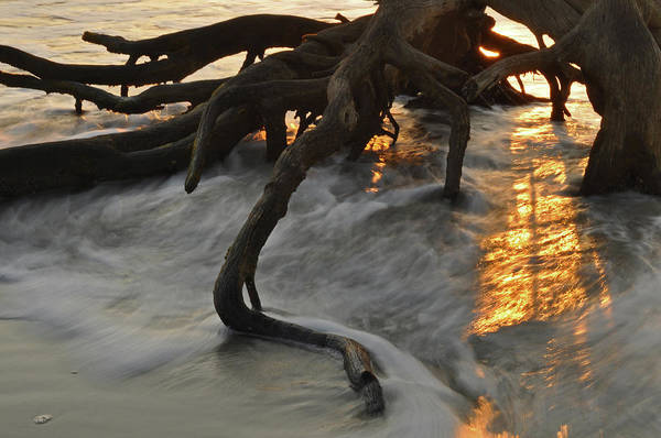 Photograph - Swirling Sunrise On Jekyll Island by Bruce Gourley