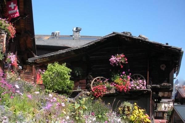 Chalet Wall Art - Photograph - Swiss Chalet Interlaken by Marilyn Dunlap