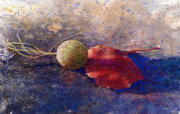 Sycamore Painting - Sycamore Ball And Leaf by Andrew King
