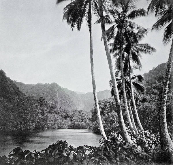French Polynesia Photograph - Tahiti by Unknown