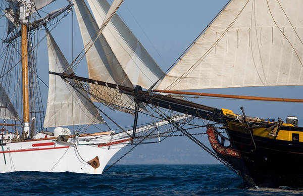 Photograph - Tall Ships Crossing Paths by Cliff Wassmann
