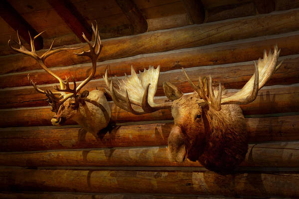 Photograph - Taxidermy - The Hunting Lodge  by Mike Savad