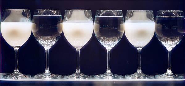 Photograph - Life Milk Tears Death by James Lanigan Thompson MFA
