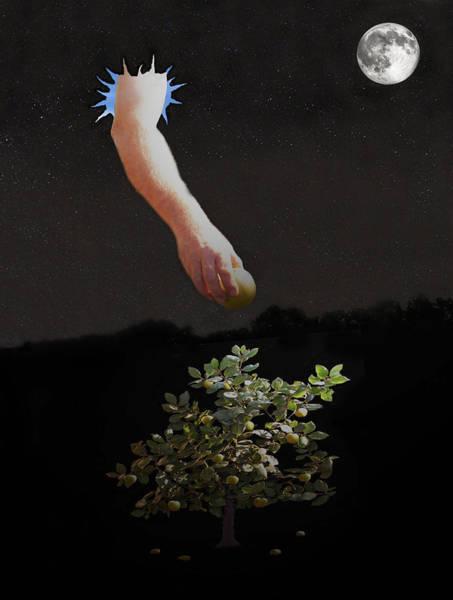 Mixed Media - Temptation Forbidden Fruit by Eric Kempson