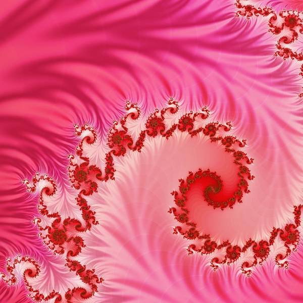 Wall Art - Digital Art - Tendrils by Sharon Lisa Clarke
