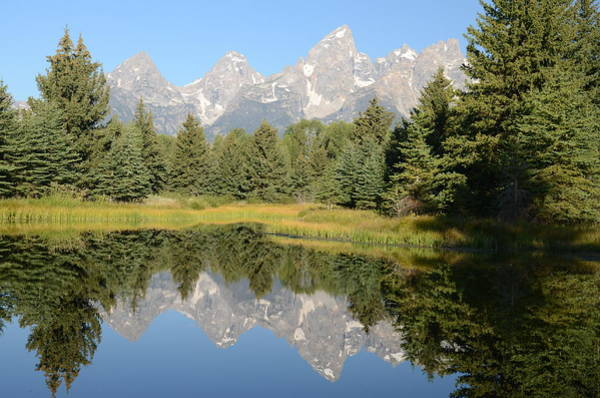 Photograph - Teton Reflections by Craig Ratcliffe