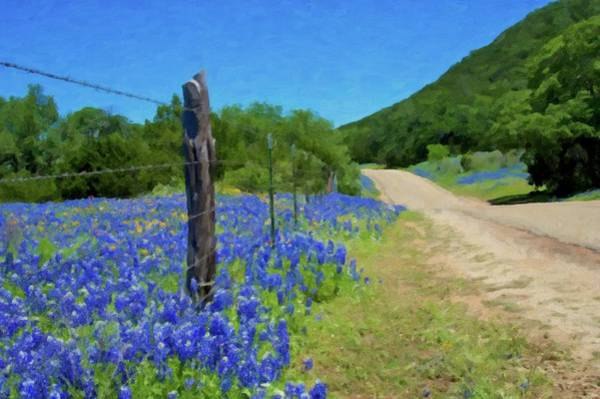 Texas Bluebonnet Digital Art - Texas Bluebonnets by Pat Whitty