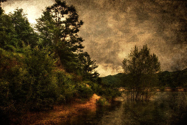 Photograph - Textured Lake by Roberto Pagani