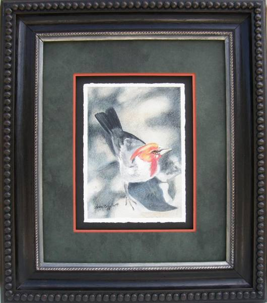 Drawing - That's Mister Red Head To You Framed by Lori Brackett
