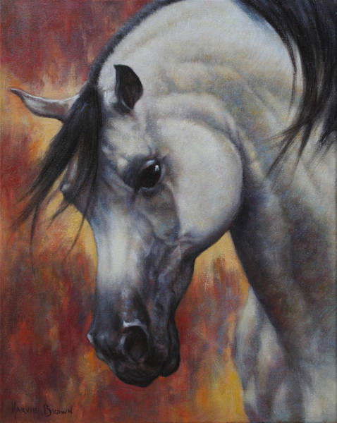 White Stallion Wall Art - Painting - The Arabian by Harvie Brown
