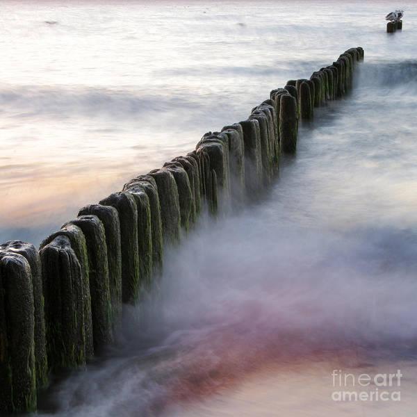 Wall Art - Photograph - the Baltic Sea by Angel Ciesniarska