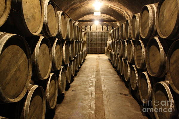 Wall Art - Photograph - The Barrels by Dennis Curry