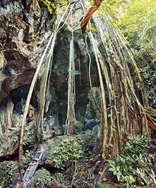 Liane Photograph - The Bat Cave by MotHaiBaPhoto Prints