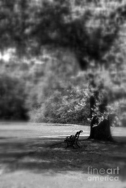 Photograph - The Bench In The Park by Susanne Van Hulst