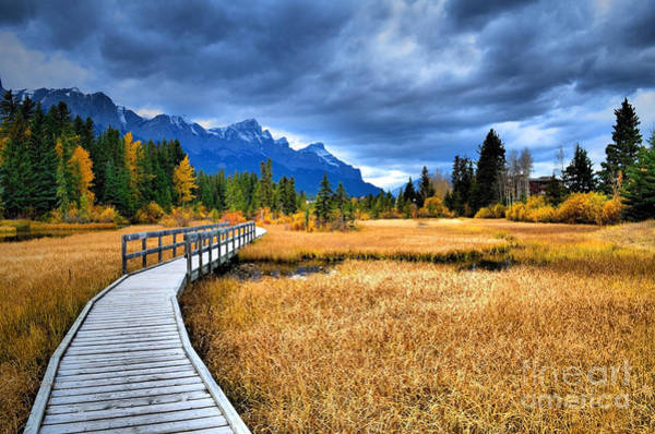 Canmore Photograph - The Boardwalk by Tara Turner