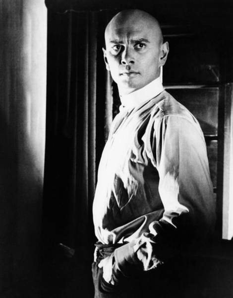 1958 Movies Photograph - The Brothers Karamazov, Yul Brynner by Everett