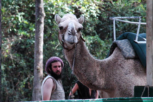 Photograph - The Camel Trainer by Teresa Blanton