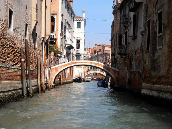 Photograph - The Canals In Venice by Bill Cannon