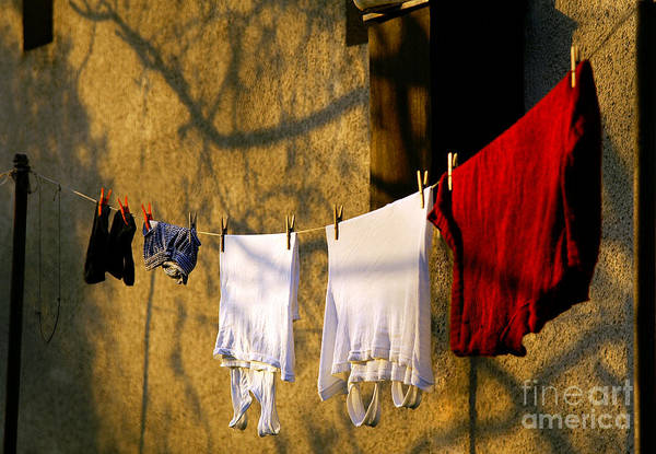 Spider Rock Photograph - The Clothes by Odon Czintos