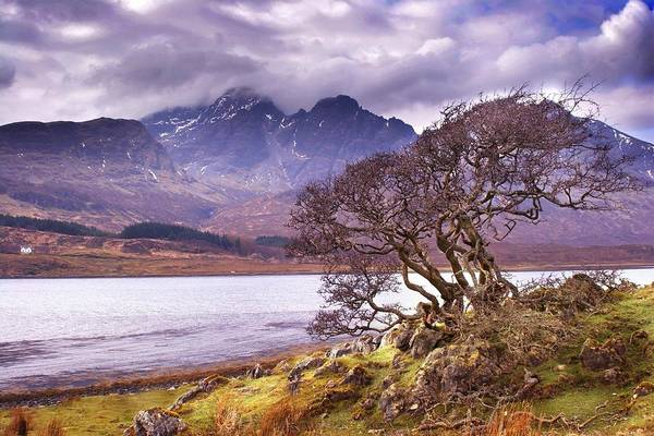 Photograph - The Cuillins Skye by Joe Macrae