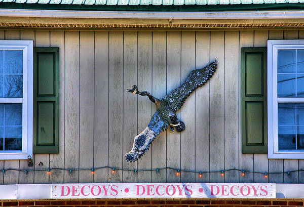 Wall Art - Photograph - The Decoy Shop by Steven Ainsworth
