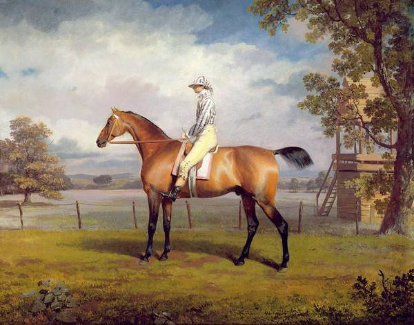 Racer Painting - The Duke Of Hamilton's Disguise With Jockey Up by George Garrard