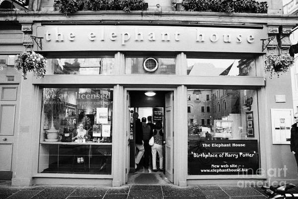 Wall Art - Photograph - The Elephant House Gourmet Tea And Coffee House Edinburgh Scotland Uk by Joe Fox