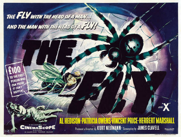 1958 Movies Photograph - The Fly, David Hedison Aka Al Hedison by Everett
