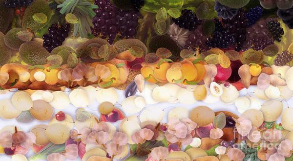 Swan Boats Digital Art - The Fruit by Odon Czintos