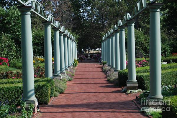 Meadowbrook Photograph - The Garden Walk by Grace Grogan