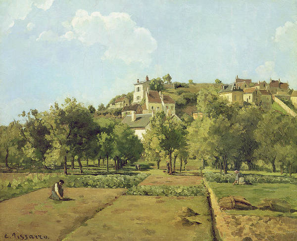 Allotment Wall Art - Painting - The Gardens Of The Hermitage by Camille Pissarro