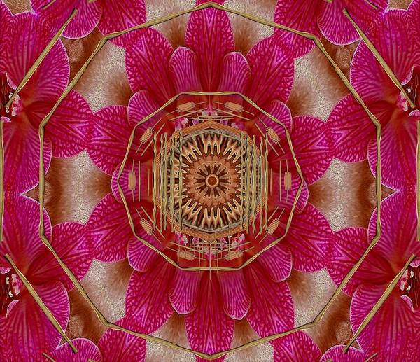 Orchid Mixed Media - The Golden Orchid Mandala by Pepita Selles