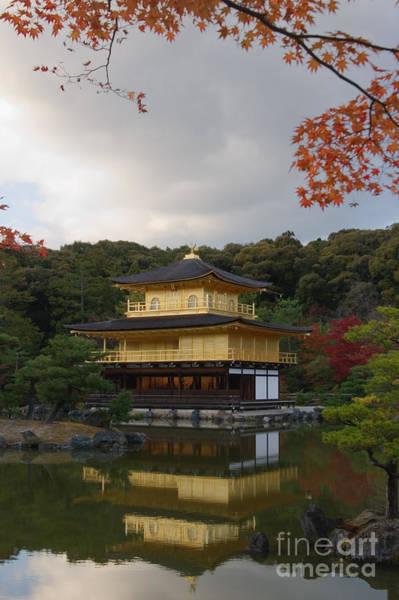 Kansai Region Wall Art - Photograph - The Golden Pavilion by Ei Katsumata