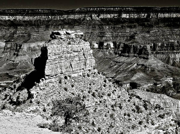Grand Mesa National Forest Photograph - The Grand Canyon Bw by Bob and Nadine Johnston