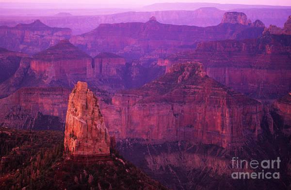 North Rim Photograph - The Grand Canyon North Rim by Bob Christopher