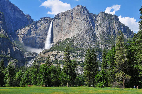 Photograph - The Grandeur Of Yosemite Falls by Lynn Bauer