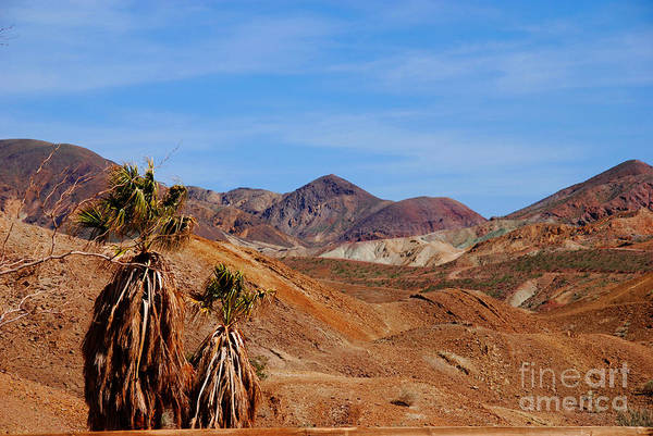 Photograph - The Hills By Calico California by Susanne Van Hulst