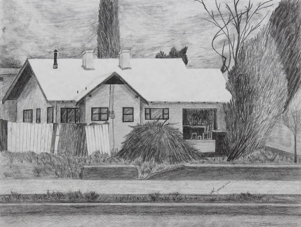 Weeds Drawing - The House Across by Kume Bryant