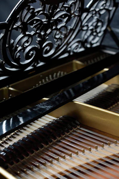 Skill Photograph - The Inside Of A Piano by Studio Blond