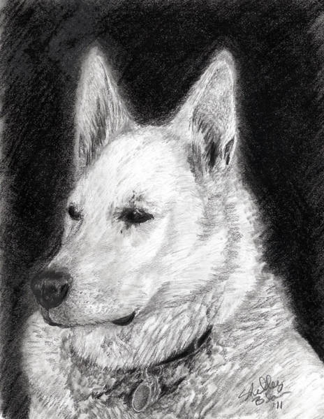 Furry Drawing - The King by Shelley Blair