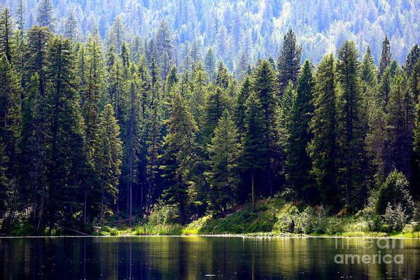 Photograph - The Lake by Carol Groenen