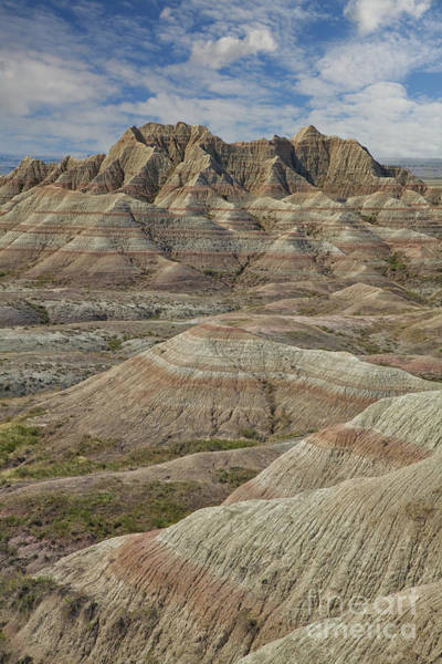 Photograph - The Layers Of The Badlands by Timothy Johnson