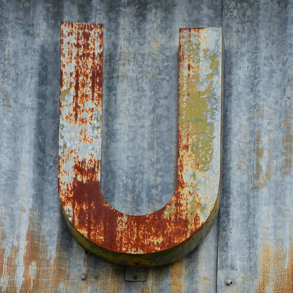 Wall Art - Photograph - The Letter U by Nikki Marie Smith