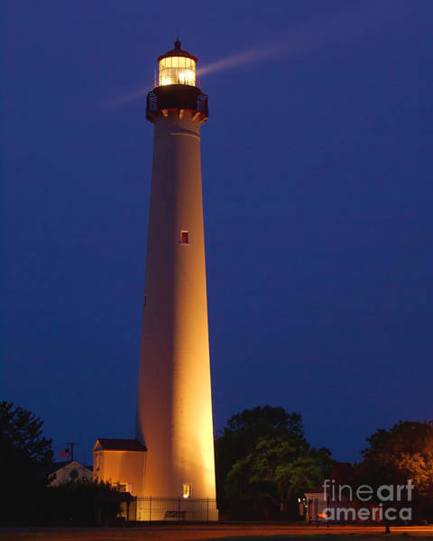 Photograph - The Light At Cape May by Nick Zelinsky