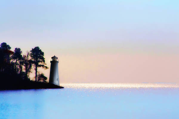 Virginia Lighthouse Photograph - The Lighthouse by Bill Cannon