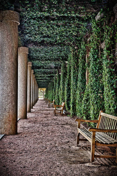 Photograph - The Long Courtyard by James Woody