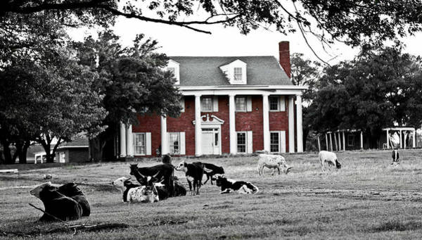 Photograph - The Manor by Elizabeth Hart